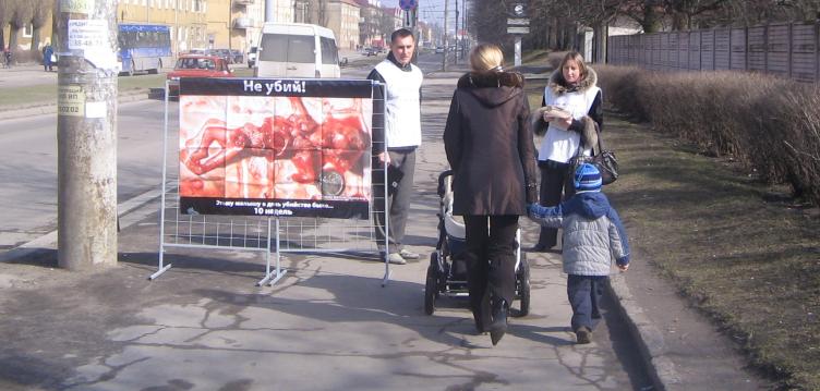 Пикет против легальности абортов в Калининграде