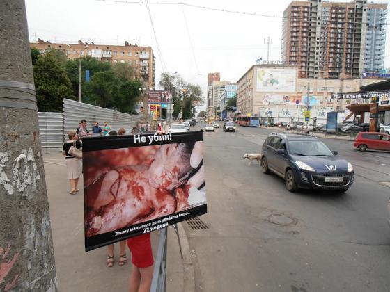 sam3 - Православная молодёжь Самары вновь обратилась к жителям города с призывом не убивать детей