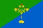 Флаг города Партизанск